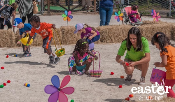 Easter. Photo Farm Pinto