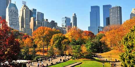 New York sous les quatre saisons