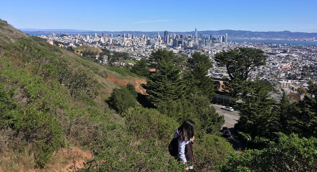 Randonnée à San Francisco. Twin Peaks à pied et en français, exclusif. Guide professionnel(le).